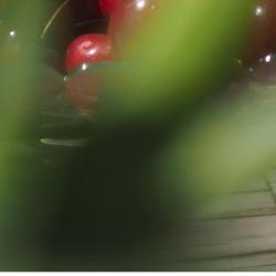 🏖️infusez, buvez, bronzez tout l'été avec les eaux de fruits & de fleurs et les thés glacés de la maison Chris'teas. sélection à découvrir en boutique et sur christeas.fr #christeas #christeasbordeaux #maisondethe #depuis2001 #entreprisefamiliale #boutiquedethe #lartduthe #bychristel #assemblagedethe #thesignature #lethealabordelaise #the #tea #alheureduthe #infusezbuvezvivez #placedesgrandshommes #bordeauxmaville #boutiquechristeas #galeriedesgrandshommes #madeinbordeaux #maisondethefamiliale #eaudefruitsetdefleurs #theglace #eaudefruitsdete #summertime