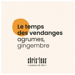 """🍇prêts, feu, go... les vendanges ont commencé ! il est tant de savourer notre thé """"le temps des vendanges"""". délicieux mélange de thés de Chine & de Ceylan aux notes d'agrumes et de gingembre. à découvrir sur christeas.fr #christeas #christeasbordeaux #maisondethe #depuis2001 #entreprisefamiliale #boutiquedethe #lartduthe #bychristel #assemblagedethe #thesignature #lethealabordelaise #the #tea #alheureduthe #infusezbuvezvivez #placedesgrandshommes #bordeauxmaville #boutiquechristeas #galeriedesgrandshommes #madeinbordeaux #maisondethefamiliale #surlaroutedesvins #vignoblebordelais #vinsdebordeaux #letempsdesvendanges"""