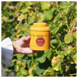 """🍍savant mélange de mangue, papaye, ananas associé à la fraîcheur de la menthe, le thé """"promenade dans les vignes"""" réveillera vos sens à l'instar d'un vin qui réveille vos papilles. prêt pour une dégustation ? #christeas #christeasbordeaux #maisondethe #depuis2001 #entreprisefamiliale #boutiquedethe #lartduthe #bychristel #assemblagedethe #thesignature #lethealabordelaise #the #tea #alheureduthe #infusezbuvezvivez #placedesgrandshommes #bordeauxmaville #boutiquechristeas #galeriedesgrandshommes #madeinbordeaux #maisondethefamiliale #surlaroutedesvins #vignoblebordelais #vinsdebordeaux #promenadedanslesvignes"""